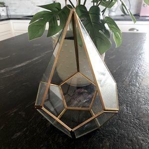 Urban outfitters terrarium